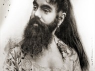 Bearded Lady | Photo courtesy of Wikimedia