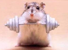 Getting active can help, but don't work yourself too hard this break! | Courtesy of Flickr user Stu Bailey