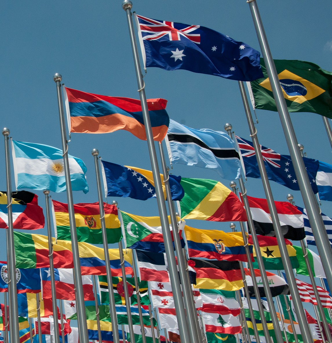 Expo-Flags
